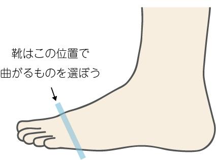 足の付け根部分のイメージ